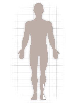 body siluette