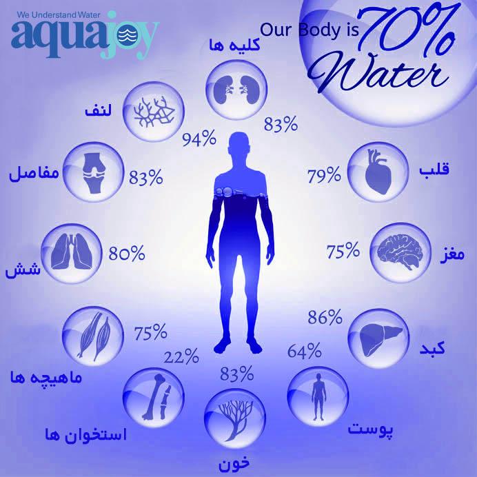 اینفوگرافیک میزان آب در بدن